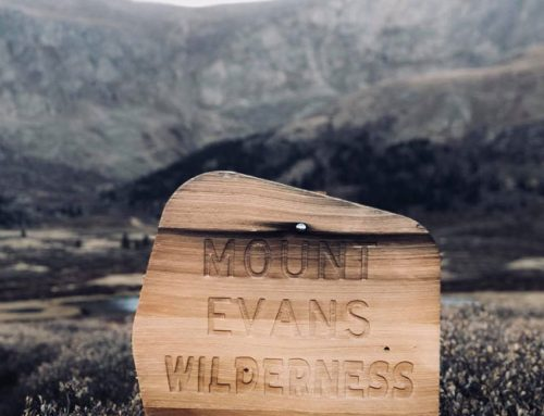 Mount Evans: A Road to the Sky