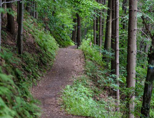 Silverdale Trailhead